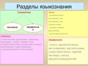 Разделы языкознания Грамматика Лексика: разговорная лексика; просторечные сло