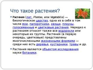Что такое растения? Растения (лат.Plantae, или Vegetabilia)— биологическое