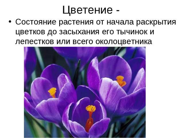 Цветение - Состояние растения от начала раскрытия цветков до засыхания его ты...