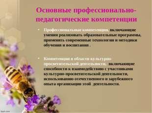 Основные профессионально-педагогические компетенции Профессиональные компетен
