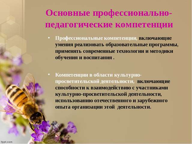 Основные профессионально-педагогические компетенции Профессиональные компетен...