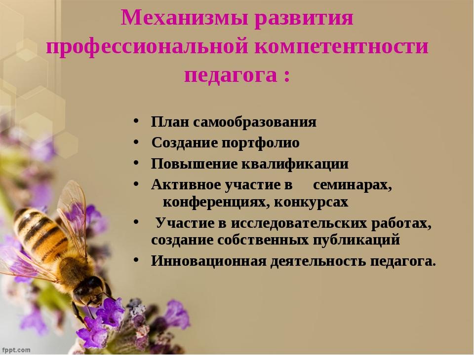 Механизмы развития профессиональной компетентности педагога : План самообразо...