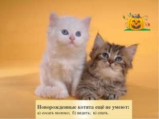 Новорожденные котята ещё не умеют: а) сосать молоко; б) видеть; в) спать.