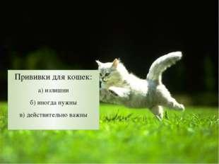 Прививки для кошек: а) излишни б) иногда нужны в) действительно важны