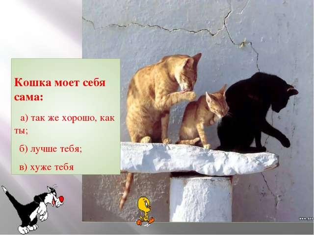 Кошка моет себя сама: а) так же хорошо, как ты; б) лучше тебя; в) хуже тебя