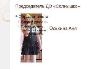 Председатель ДО «Солнышко»