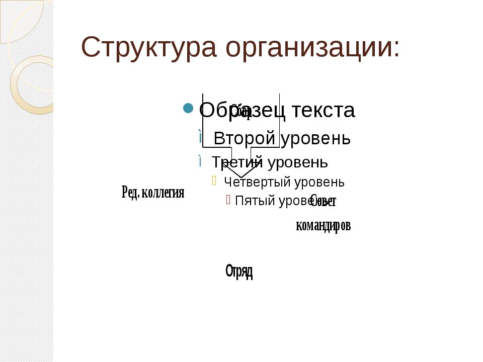 Структура организации: