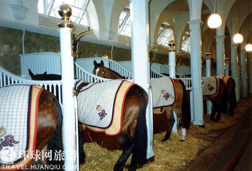 фотография Королевские конюшни : (Лондон - Великобритания). Фотография 65809