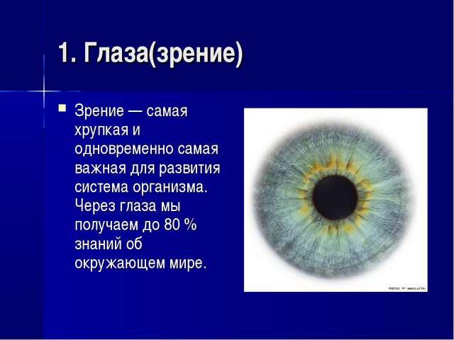 1. Глаза(зрение) Зрение — самая хрупкая и одновременно самая важная для разви...