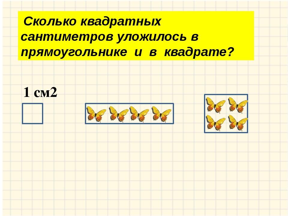 Сколько квадратных сантиметров уложилось в прямоугольнике и в квадрате? 1 см2