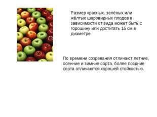 Размер красных, зелёных или жёлтых шаровидных плодов в зависимости от вида мо