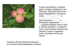 Плоды употребляют в свежем виде и в виде сухофруктов; они пригодны также для