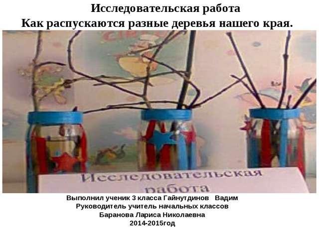 Выполнил ученик 3 класса Гайнутдинов Вадим Руководитель учитель начальных кл...