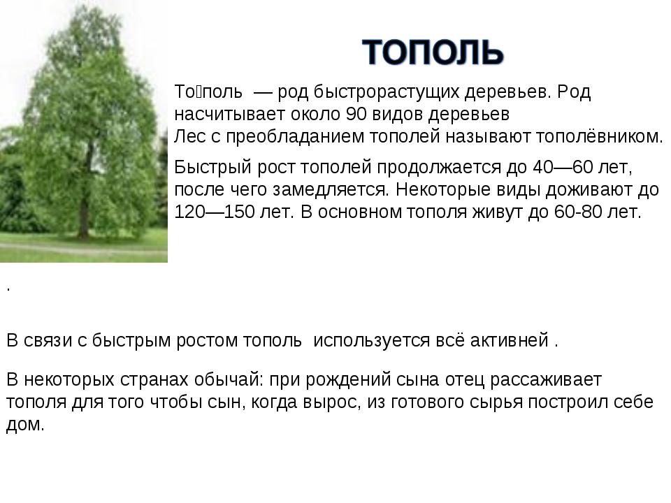 То́поль — род быстрорастущих деревьев. Род насчитывает около 90 видов деревь...