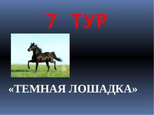7 ТУР «ТЕМНАЯ ЛОШАДКА»