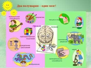 Два полушария – один мозг!