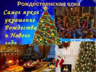 Рождественская елка Самое яркое украшение Рождества и Нового года