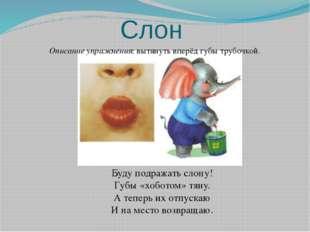 Слон Описание упражнения: вытянуть вперёд губы трубочкой. Буду подражать слон