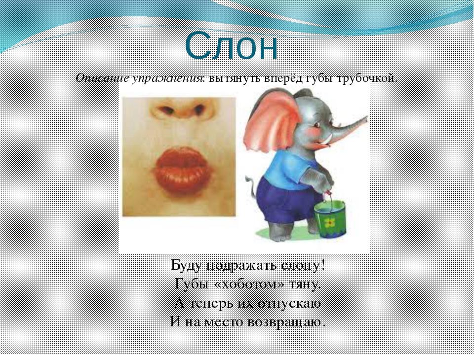 Слон Описание упражнения: вытянуть вперёд губы трубочкой. Буду подражать слон...