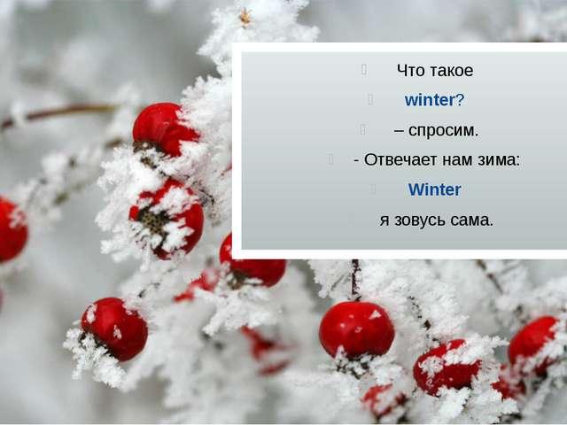 Что такое winter? – спросим. - Отвечает нам зима: Winter я зовусь сама.