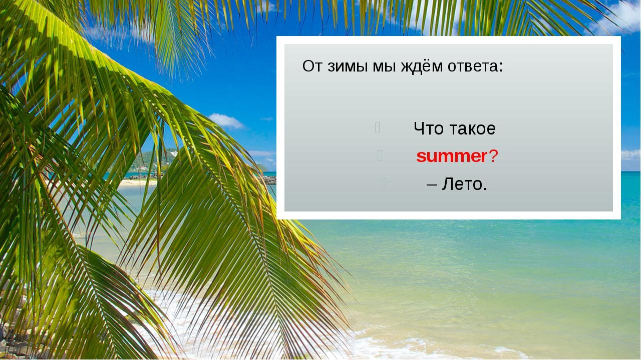 От зимы мы ждём ответа: Что такое summer? – Лето.