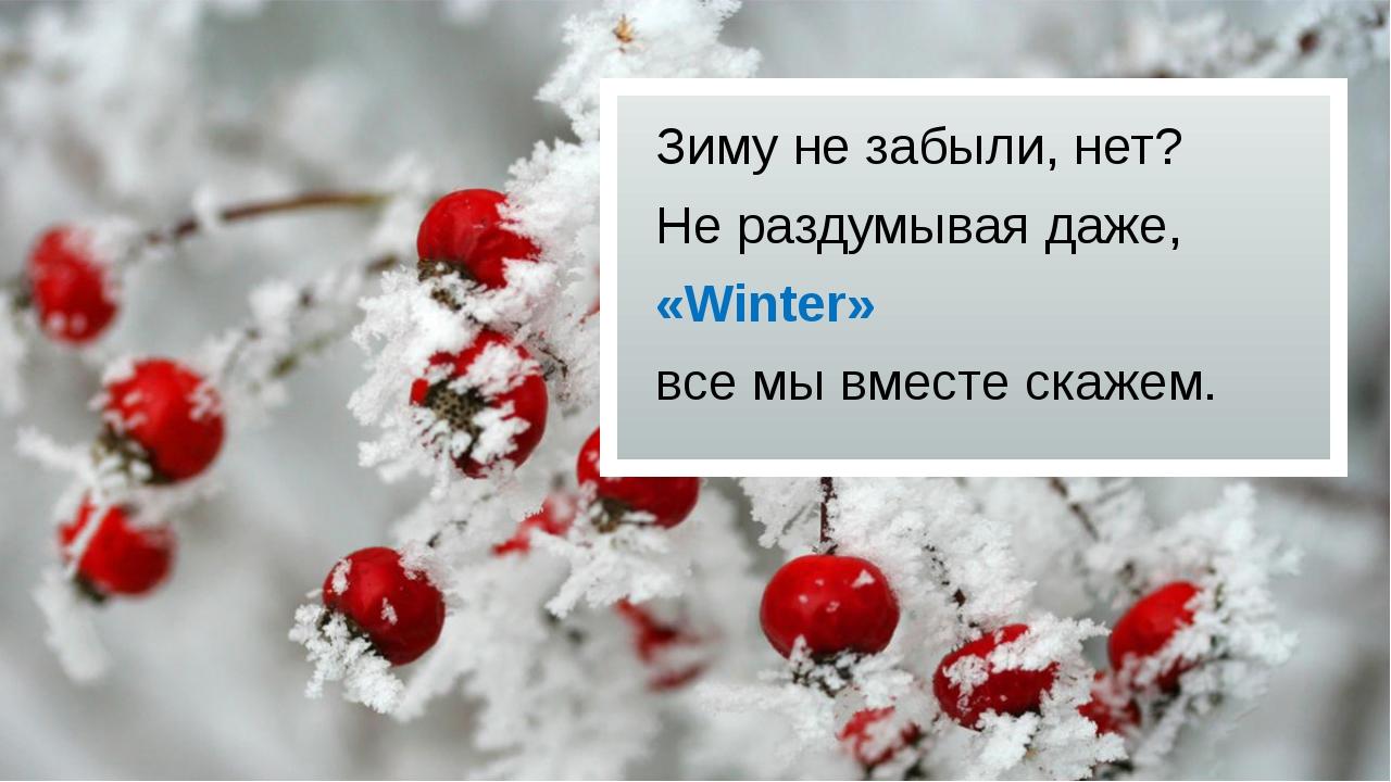 Зиму не забыли, нет? Не раздумывая даже, «Winter» все мы вместе скажем.