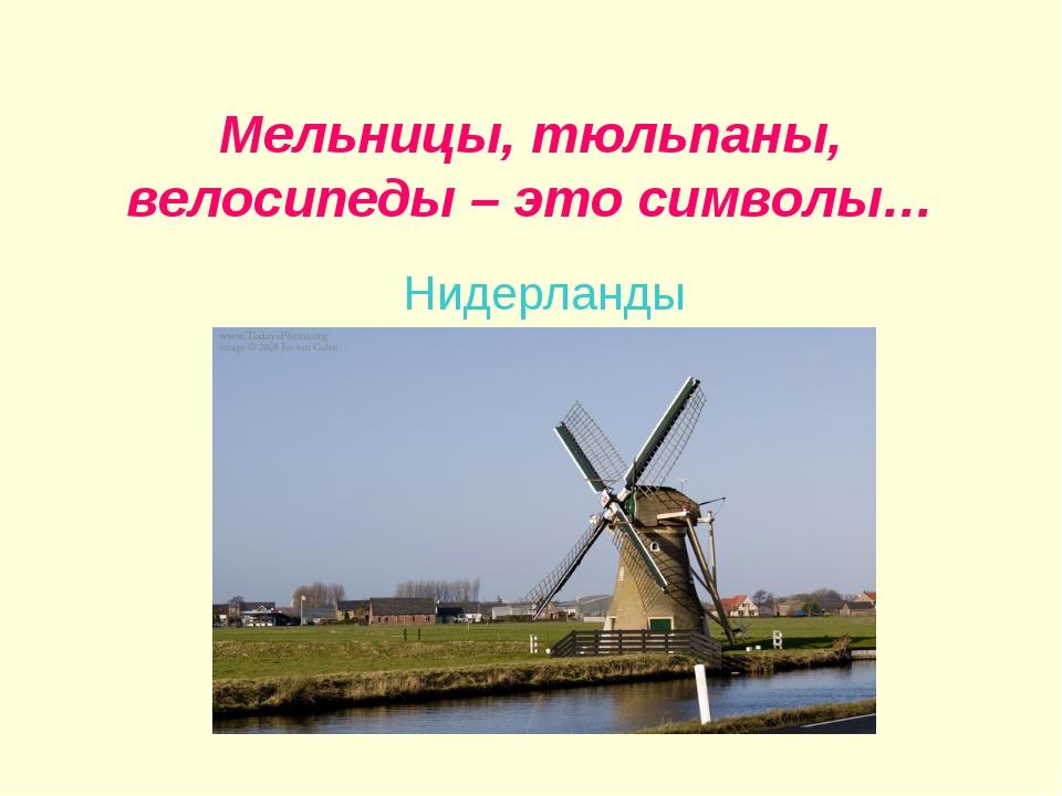 Мельницы, тюльпаны, велосипеды – это символы… Нидерланды