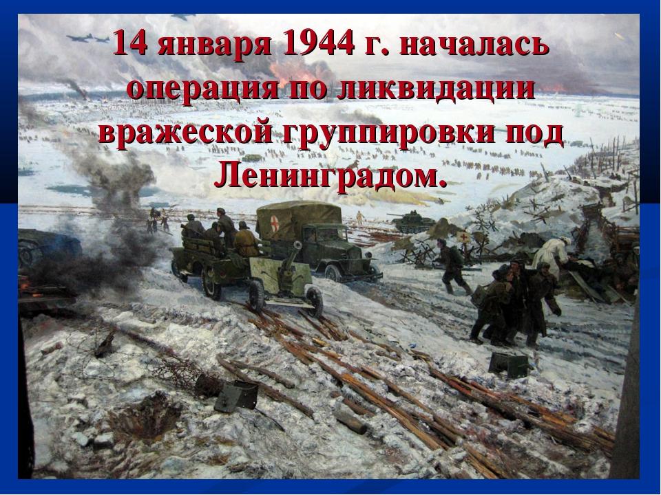 14 января 1944 г. началась операция по ликвидации вражеской группировки под Л...