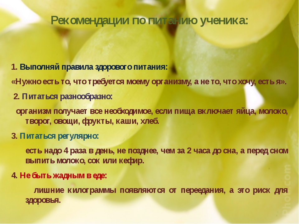 Правильное Питание 6 Класс Одноклассники
