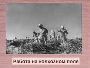 Работа на колхозном поле
