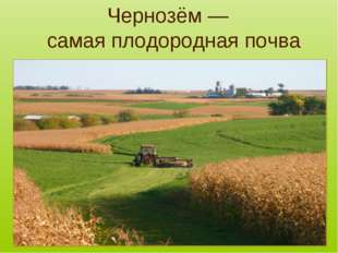 Чернозём — самая плодородная почва .