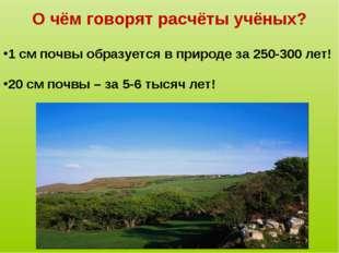 О чём говорят расчёты учёных? 1 см почвы образуется в природе за 250-300 лет!