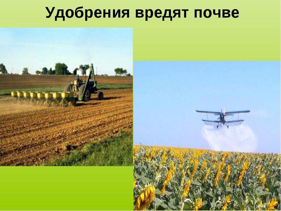 Удобрения вредят почве