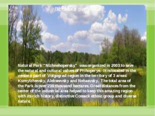 "Natural Park ""Nizhnehopersky"" was organized in 2003 to save the natural and"