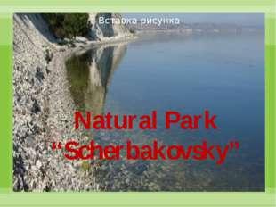 """Natural Park """"Scherbakovsky"""""""