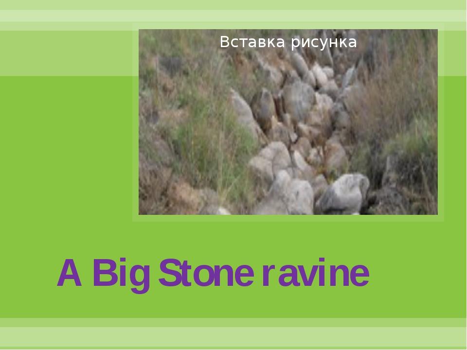 A Big Stone ravine