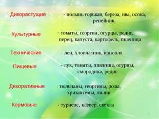 Дикорастущие - полынь горькая, береза, ива, осока, репейник. Культурные тома