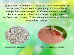 Другая опасная болезнь – малярия, вызывается малярийным плазмодием. В кровь о