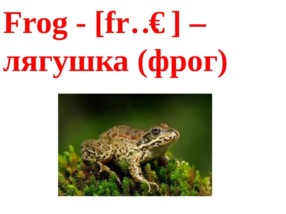 Frog- [frɔɡ] – лягушка (фрог)