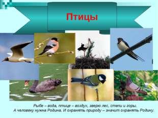 Рыбе – вода, птице – воздух, зверю лес, степи и горы. А человеку нужна Родин