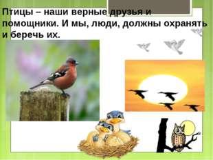 Птицы – наши верные друзья и помощники. И мы, люди, должны охранять и беречь