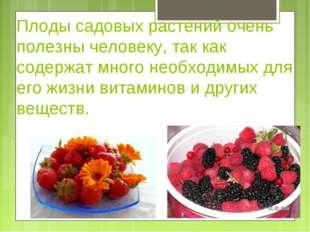 Плоды садовых растений очень полезны человеку, так как содержат много необход