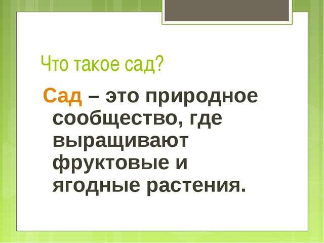 Что такое сад? Сад – это природное сообщество, где выращивают фруктовые и яго...