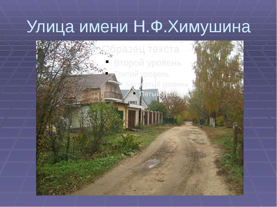Улица имени Н.Ф.Химушина
