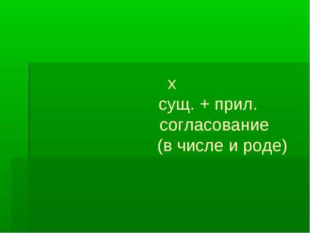 х сущ. + прил. согласование (в числе и роде)