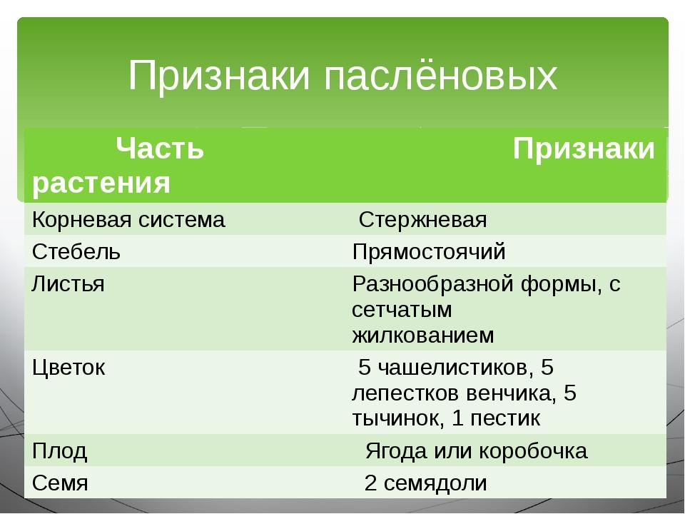 Признаки паслёновых Частьрастения Признаки Корневаясистема Стержневая Стебель...