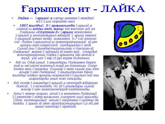 Лайка — ғарышқа сапар шеккен әлемдегі тұңғыш тіршілік иесі. 1957 жылдың 3-қар...