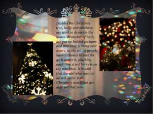 Besides the Christmas tree, holly and mistletoe are used to decorate the hous