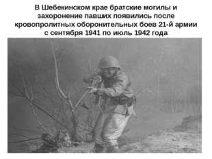 В Шебекинском крае братские могилы и захоронение павших появились после крово