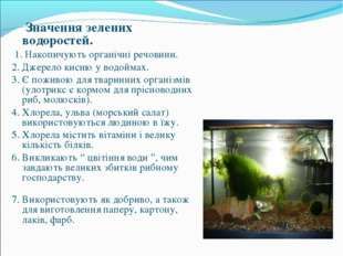 Значення зелених водоростей. 1. Накопичують органічні речовини. 2. Джерело к